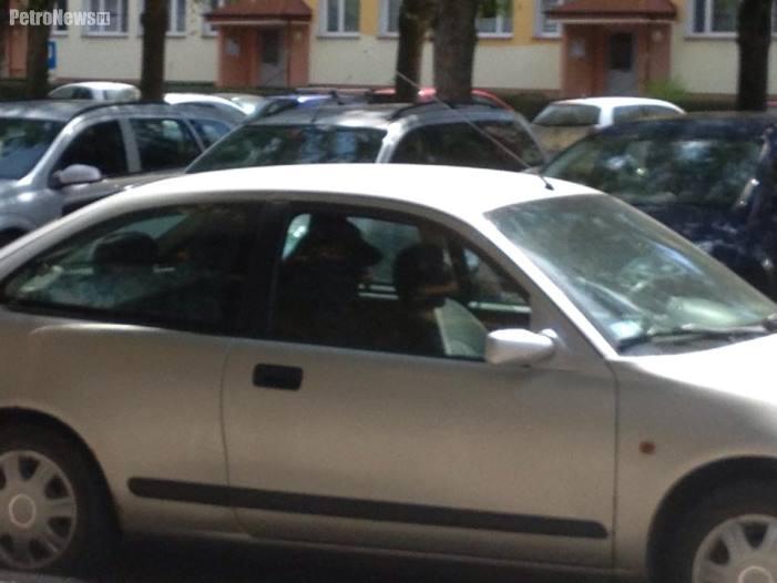 pies_auto2